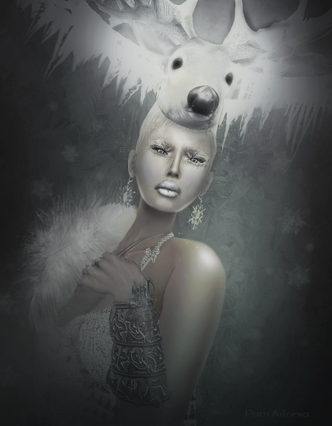 Spirit Llewellyn.Cover.Ice Queens.Fashion Teller